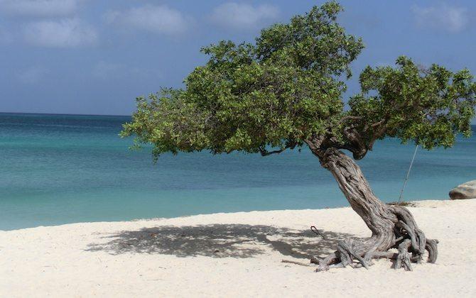 Strand von Aruba_1