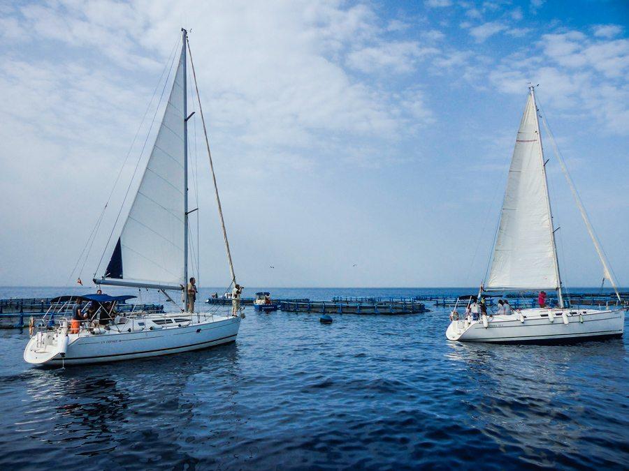 Urlaub auf Teneriffa - Liane Ehlers-024