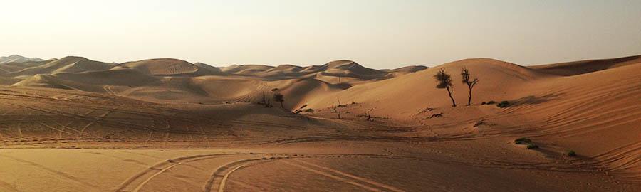Urlaub im Februar - Beste Reisezeit Februar - Reisezeit - Urlaub in Dubai und Abu Dhabi - übersicht - Mexiko - Sri Lanka - schön - warm - winter - strand - wetter - direkt - hotels - reisen - lassen - reise - noch - ihren - finden - mehr - zeit - karibik - kuba - märz - beste - sonne - beste reisezeit februar