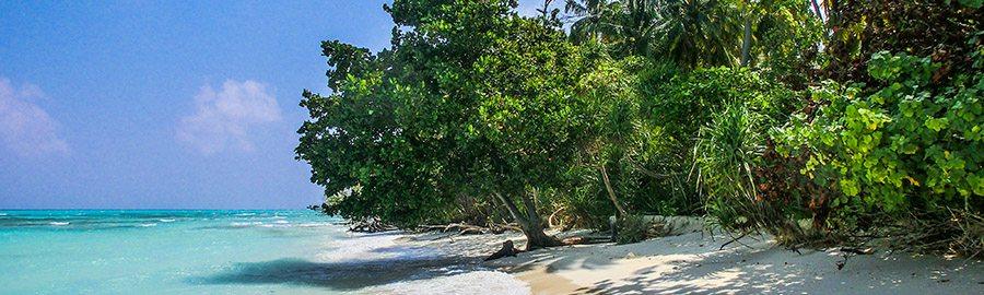 Urlaub im Februar - Beste Reisezeit Februar - Reisezeit - Urlaub auf den Malediven - übersicht - Mexiko - Sri Lanka - schön - warm - winter - strand - wetter - direkt - hotels - reisen - lassen - reise - noch - ihren - finden - mehr - zeit - karibik - kuba - märz - beste - sonne - beste reisezeit februar