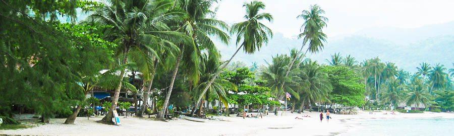 Urlaub im Februar - Beste Reisezeit Februar - Reisezeit - Urlaub in Thailand - übersicht - Mexiko - Sri Lanka - schön - warm - winter - strand - wetter - direkt - hotels - reisen - lassen - reise - noch - ihren - finden - mehr - zeit - karibik - kuba - märz - beste - sonne - beste reisezeit februar