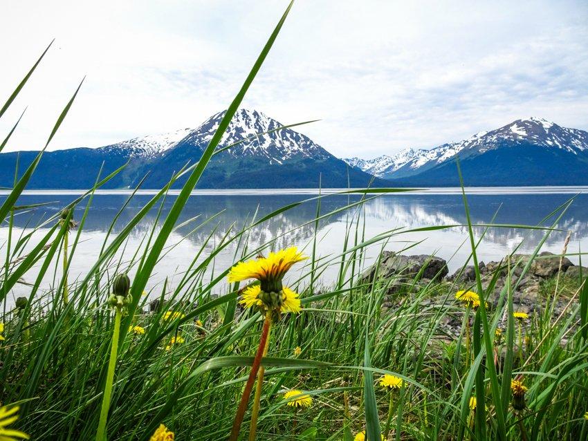 Gletscherwandern in Alaska 2017 - Brigitte Geiselhart-